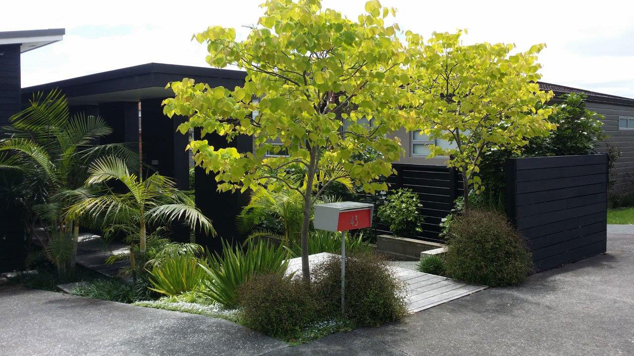 Contemporary garden landscape design garden care for Landscaping companies in new zealand