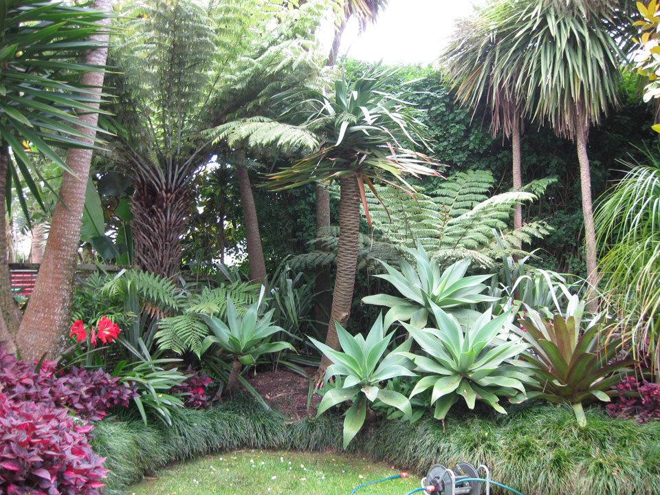 Sub tropical garden landscape design garden care for Tropical home garden design