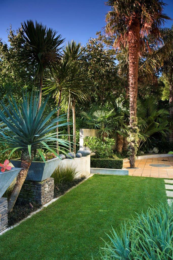 Sub tropical garden landscape design garden care for Landscaping auckland