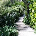 Natural garden landscape design NZ native plants