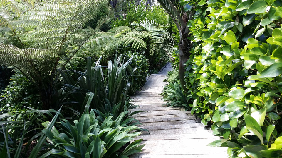 Natural garden landscape design garden care services for Small garden designs nz