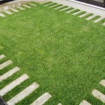 Lawn and turf specialists Auckland