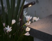 Step lighting detail