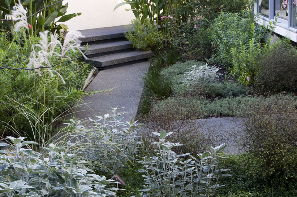 Planting plans6 landscape design garden care services for Landscaping companies in new zealand
