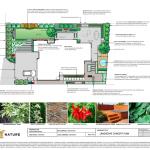 Planting plan, garden design