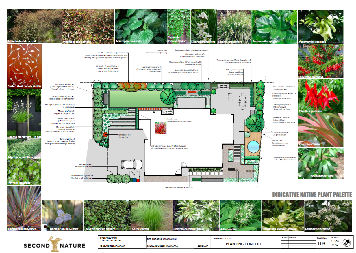 Planting plans landscape design garden care services for Landscaping companies in new zealand