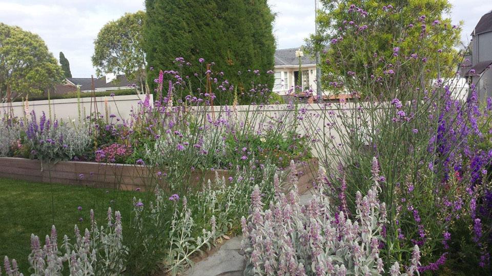 Cottage garden landscape design garden care services and cottage garden landscaping workwithnaturefo