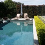 Poolside garden design