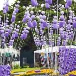 Show garden design