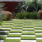 Checkerboard patterned lawn