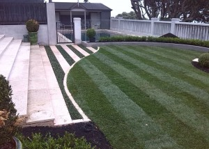 Custom design and maintained lawns