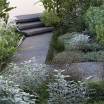 Exposed aggregate concrete path with paved in situ concrete steps