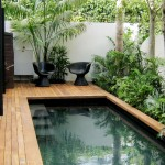 Small courtyard pool with timber surround