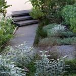Cottage garden plants, flowers, design