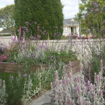 Cottage garden landscaping